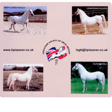 Lipizzaner Society Mousemat